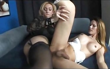 One dildo in several TS ass holes