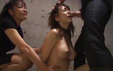 Sexy orgy delight